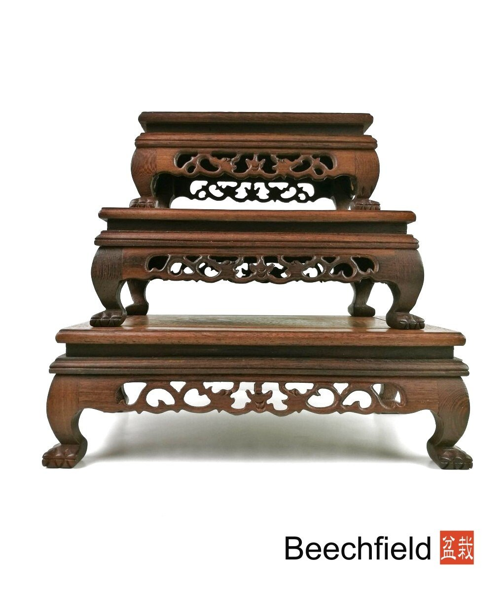 Delightful Traditional Style Bonsai Display Table Rosewood Set