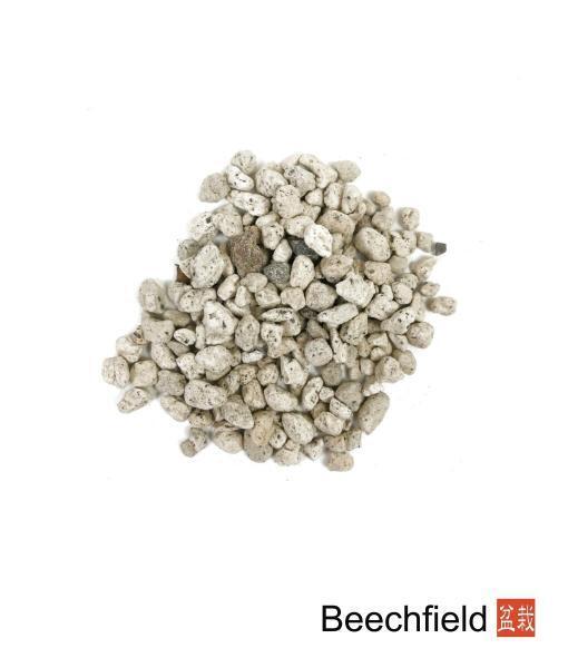 Pumice Rock Bonsai Soil Orchid Cacti Beechfield Bonsai-01