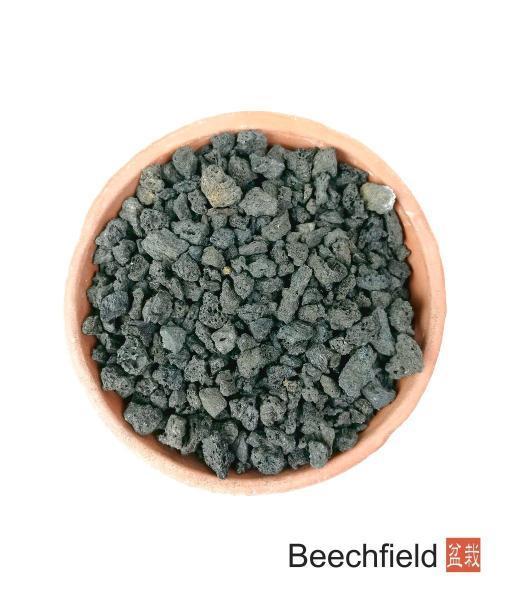 Crushed Lava Rock 1 Litre Bonsai Soil Beechfield Bonsai