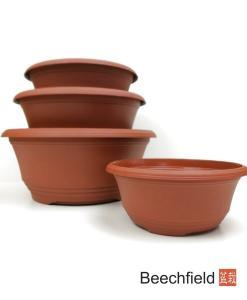 Terracotta Plastic Bonsai Nursery Training Pots Beechfield Bonsai