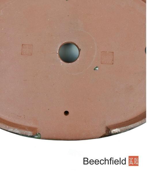 O10-13 Oval Glazed 340mm Bonsai Pot Beechfield Bonsai
